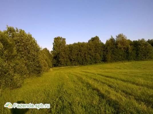 Коттеджный поселок  Киимаярви, Приозерский район.