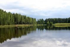 Рядом с Ровам расположен Коттеджный поселок  Константиновка