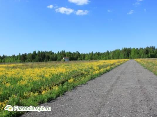 Коттеджный поселок  Большое Горлово, Ломоносовский район.
