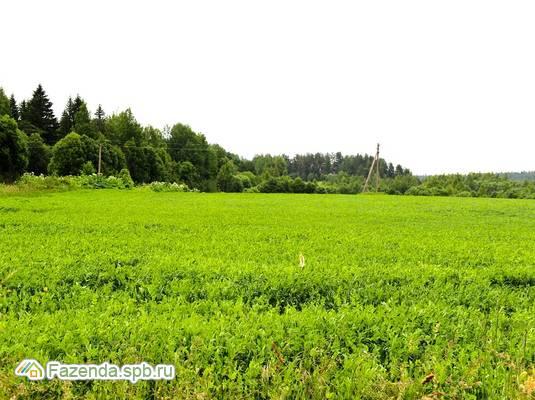 Коттеджный поселок  Репао Парк, Выборгский район.