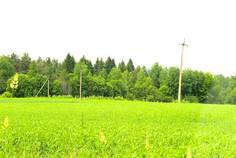 Рядом с Малинки расположен Коттеджный поселок  Репао Парк