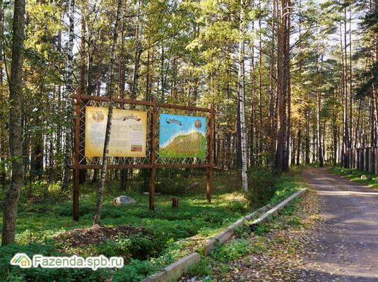 Коттеджный поселок  Ораваниеми, Приозерский район.