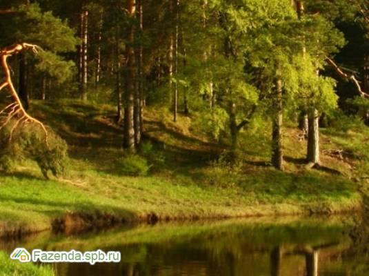 Коттеджный поселок  Рябово, Тосненский район.