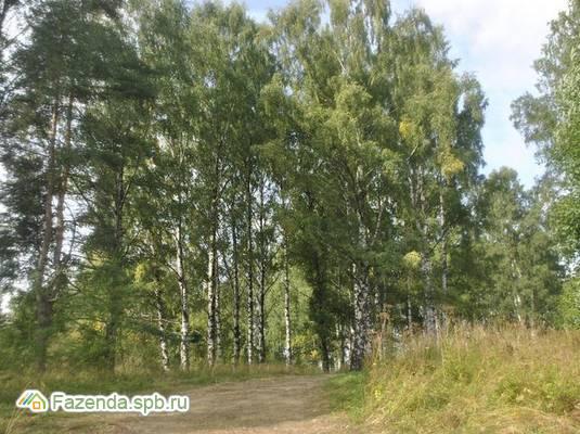 Коттеджный поселок  Полесье, Всеволожский район.
