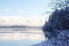 Коттеджный поселок Волшебное озеро