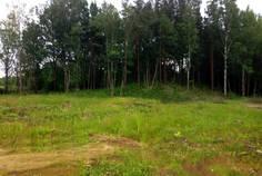 Рядом с Янтарный Бор расположен Коттеджный поселок  Кирполье
