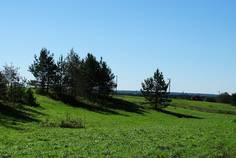 Рядом с Киркко-Ярви расположен Коттеджный поселок  Большая медведица