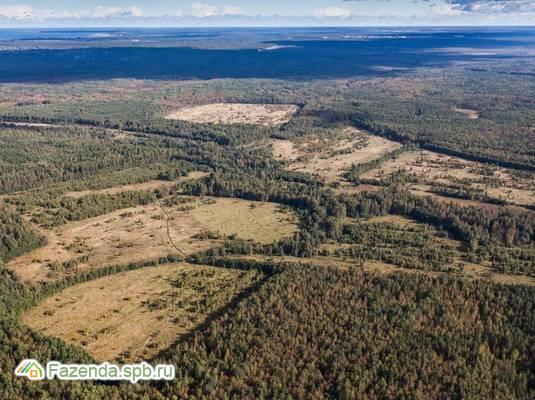 Коттеджный поселок  Подберёзовик, Всеволожский район.