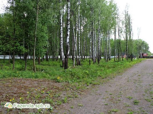 Коттеджный поселок  LESO Парк, Всеволожский район.