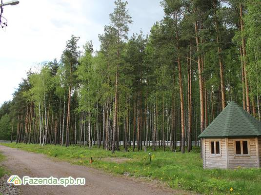 Коттеджный поселок  LESO Парк, Всеволожский район. Актуальное фото.