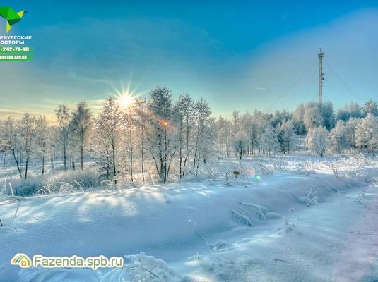 Коттеджный поселок  Новые Мендсары, Всеволожский район. Актуальное фото.