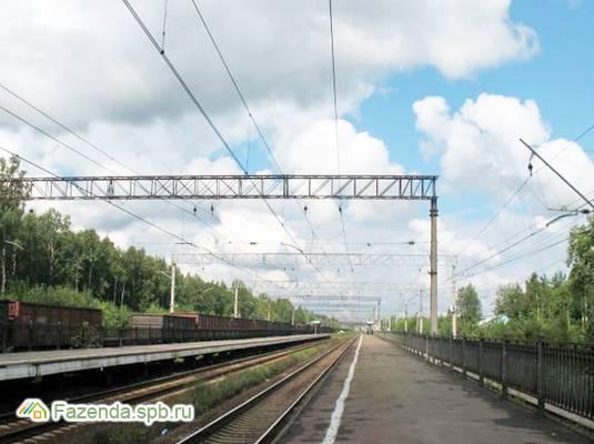 Коттеджный поселок  Царева Дача, Всеволожский район.