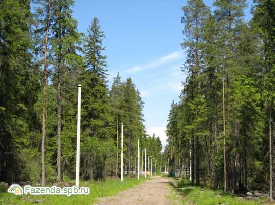 Коттеджный поселок  Мельничный Ручей , Всеволожский район.