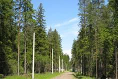 Рядом с Вишневый Сад расположен Коттеджный поселок  Мельничный Ручей