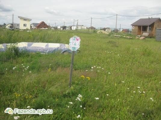 Продажа земельного участка Дятлицы. 12 соток..