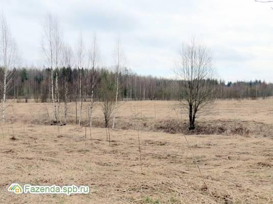 Продажа земельного участка Горьковское. 4 соток..