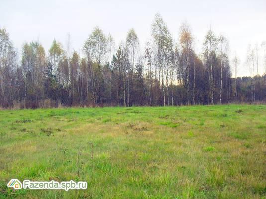 Продажа земельного участка Волочаевка. 296 соток..