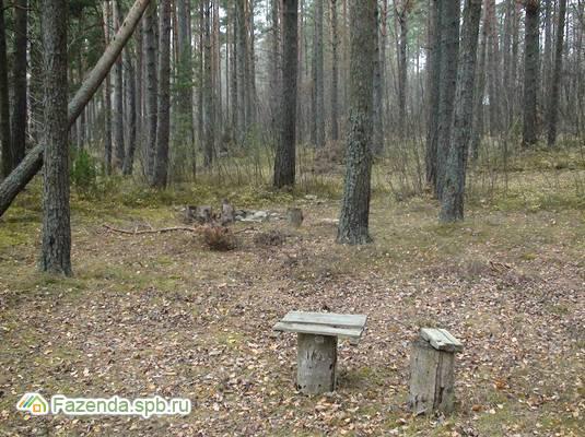 Продажа земельного участка Пески. 75 соток..