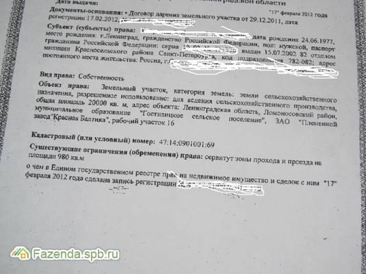 Продажа земельного участка Гостилицы. 2 соток..
