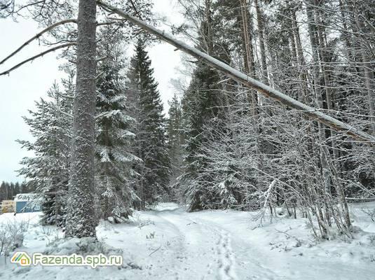 Коттеджный поселок  Завидный, Приозерский район.