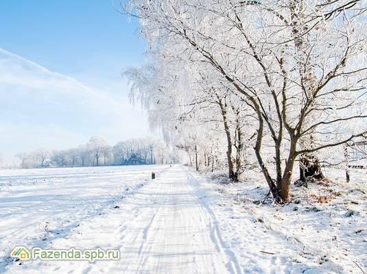 Коттеджный поселок  Павловский посад, Гатчинский район.