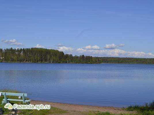 Коттеджный поселок  Озеро уДачи, Выборгский район.