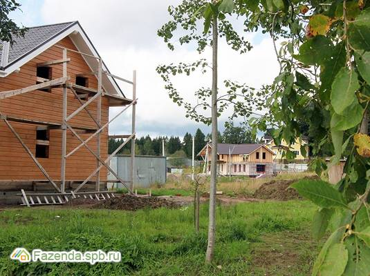 Коттеджный поселок  Софийские Сады, Всеволожский район. Актуальное фото.