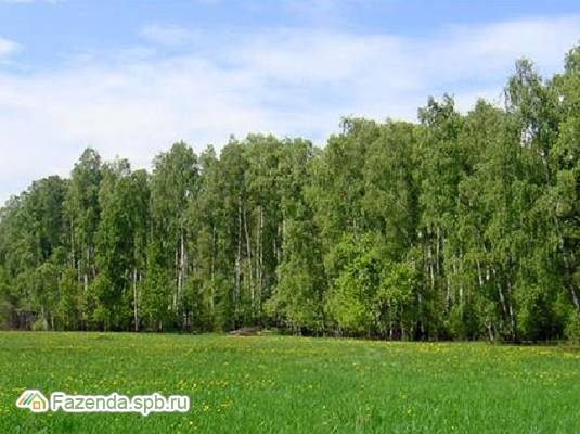 Коттеджный поселок  Петергофская рапсодия, Ломоносовский район.
