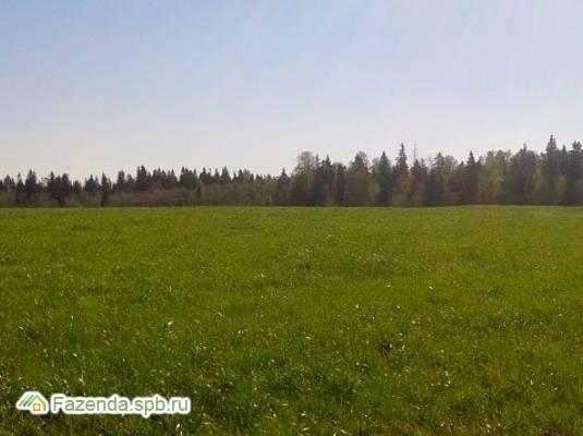 Коттеджный поселок  Лисички, Ломоносовский район.
