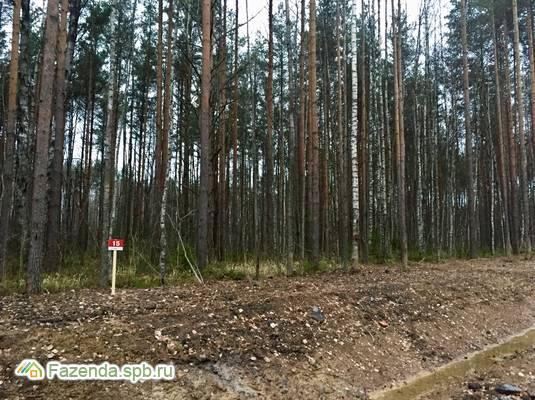 Коттеджный поселок  Дворянская усадьба, Всеволожский район.
