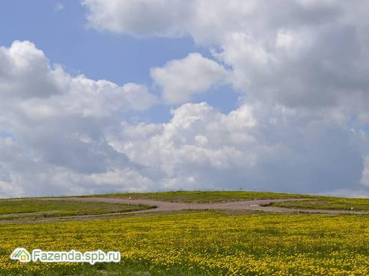 Коттеджный поселок  Усадьба на юге, Гатчинский район.
