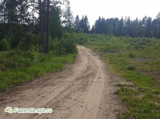 Коттеджный поселок  Сосновские горки, Приозерский район.