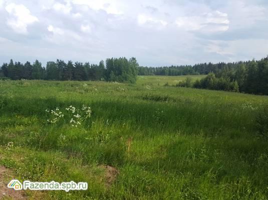 Коттеджный поселок  Сосновские горки, Приозерский район. Актуальное фото.