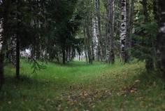 Рядом с Охтинское Раздолье расположен Коттеджный поселок  Земельные участки в Мистолово