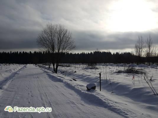Коттеджный поселок  Егоровка, Всеволожский район.