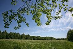 Рядом с Демидовский парк расположен Коттеджный поселок  Терра Туутари