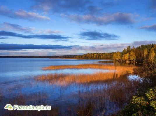 Коттеджный поселок  Резиденция у озера, Всеволожский район.