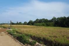Рядом с ВикоСад расположен Коттеджный поселок  Дивная Деревня