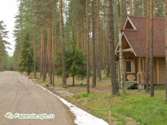 Коттеджный поселок  Ольховый, Выборгский район.