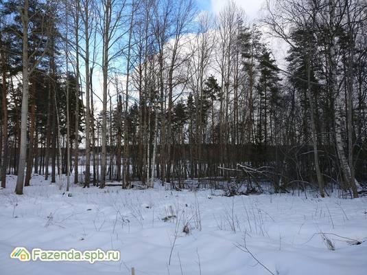 Коттеджный поселок  Мишкин лес, Приозерский район.