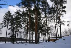 Рядом с Молодежное расположен Коттеджный поселок  Мишкин лес
