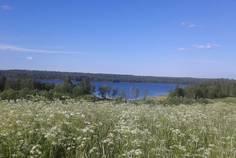 Рядом с Сосны расположен Коттеджный поселок  Нижний