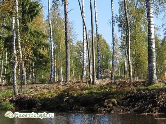 Коттеджный поселок  Стеклянный ручей, Всеволожский район. Актуальное фото.