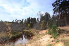 Рядом с Неоклассика расположен Коттеджный поселок  Paradise Park