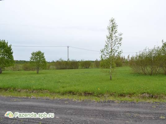Коттеджный поселок  Дружный, Ломоносовский район.