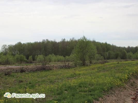Коттеджный поселок  Лесная поляна, Ломоносовский район.