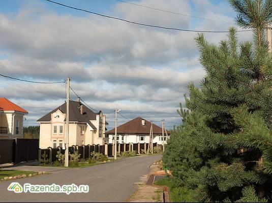 Коттеджный поселок  Мое Мистолово, Всеволожский район. Актуальное фото.