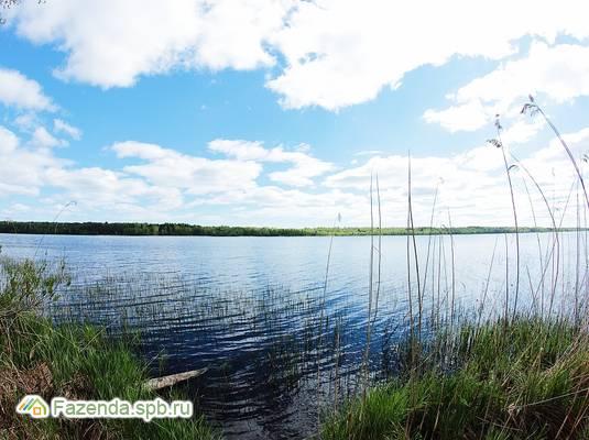 Коттеджный поселок  Suvantojarvi (СувантоЯрви), Приозерский район.