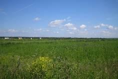 Рядом с Красносельский расположен Коттеджный поселок  Южные просторы