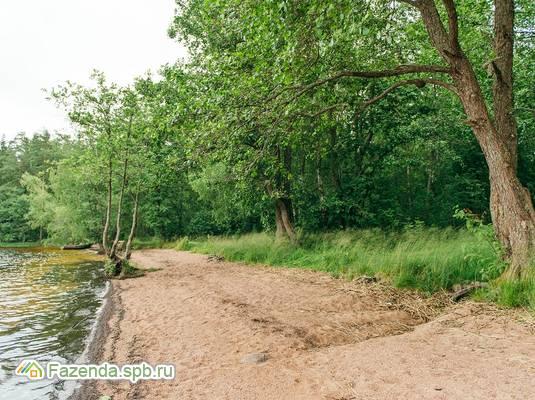 Коттеджный поселок  Сосновый Пляж, Выборгский район. Актуальное фото.